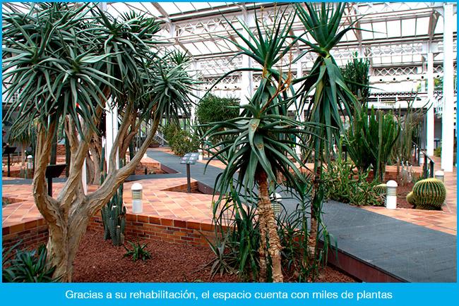 Invernadero de la Arganzuela